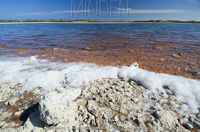 Drought, drying lake with salt deposits on shore, Lake Herschel, Rottnest Island, Western Australia, february  -  Krystyna Szulecka/ FLPA