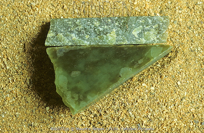 Minden Pictures stock photos - Gemstone, Nephrite, silicate of ...