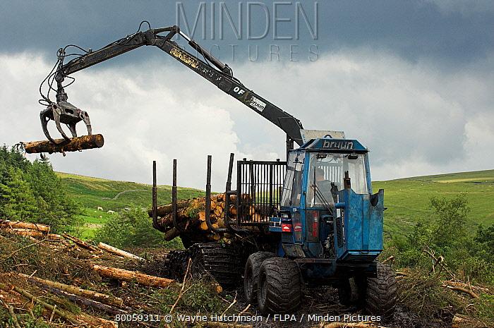 Self-proppelled logging wagon, loading lengths of wood, Cumbria, England  -  Wayne Hutchinson/ FLPA