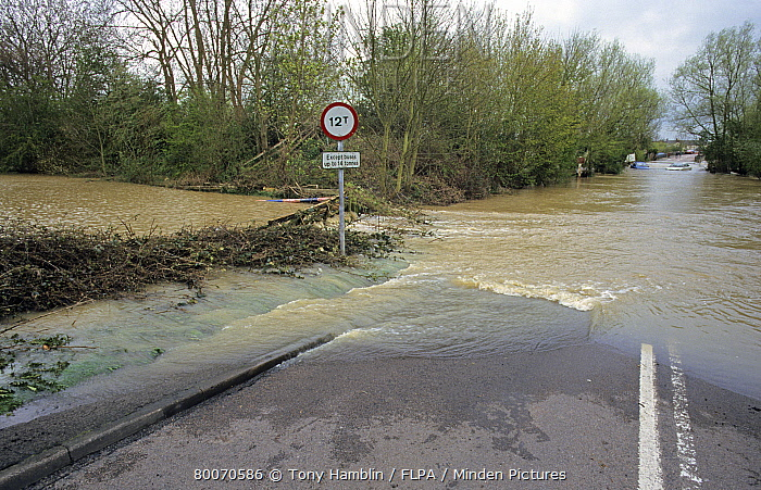 Road blocked by river flooding, River Avon, Welford-on-Avon, Warwickshire, England, easter  -  Tony Hamblin/ FLPA
