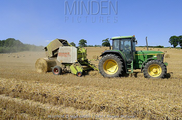 Claas round baler and John Deere tractor baling wheat straw  -  Nigel Cattlin/ FLPA