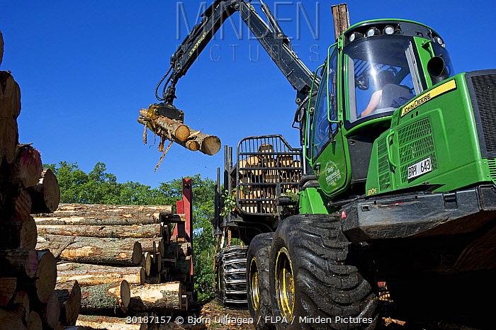 John Deere E Forwarder loading logs onto timber barge, Archipelago Sea, Baltic Sea, Sweden, june  -  Bjorn Ullhagen/ FLPA