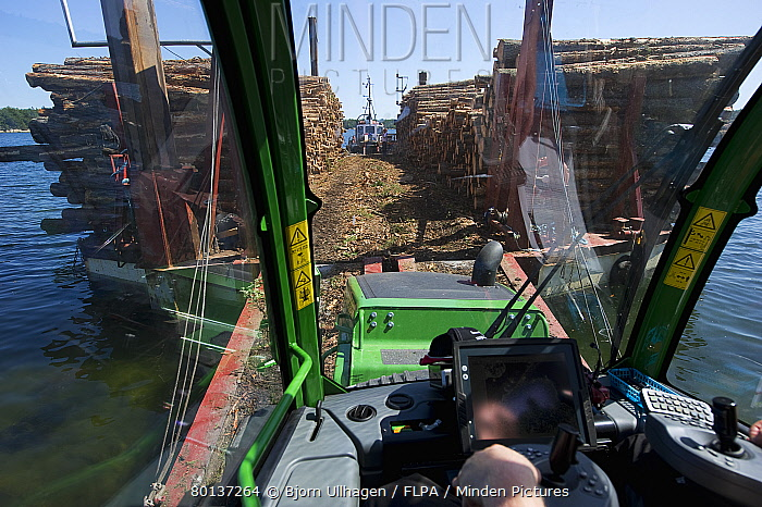 Interior of John Deere E Forwarder loading logs onto timber barge, Archipelago Sea, Baltic Sea, Sweden, june  -  Bjorn Ullhagen/ FLPA