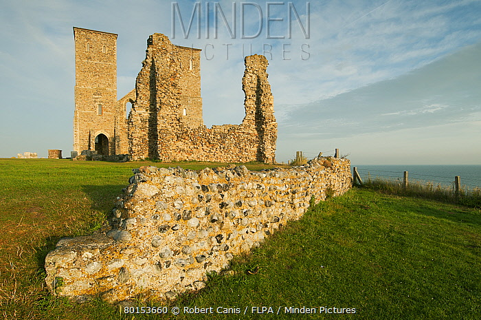 View of th Century ruined church and coast, St. Mary's Church, Reculver, Kent, England, August  -  Robert Canis/ FLPA