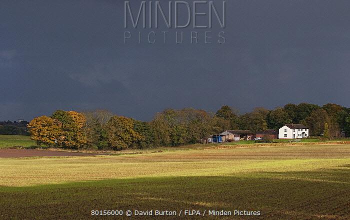 Stormclouds over arable farmland and farmhouse, Marsham, Norfolk, England, November  -  David Burton/ FLPA