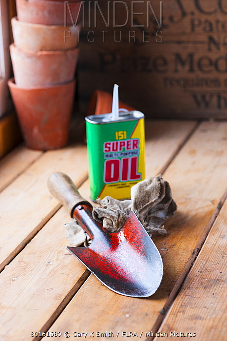 Garden hand trowel with cleaning rag and oil in shed, Norfolk, England, June  -  Gary K Smith/ FLPA