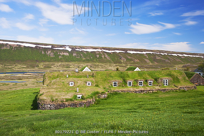 Turf dwellings, Thvera, Iceland, June  -  Bill Coster/ FLPA