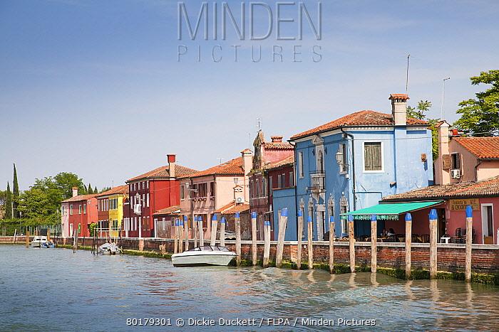 Colourful houses along waterfront, Mazzorbo Island, Venetian Lagoon, Venice, Veneto, Italy, May  -  Dickie Duckett/ FLPA