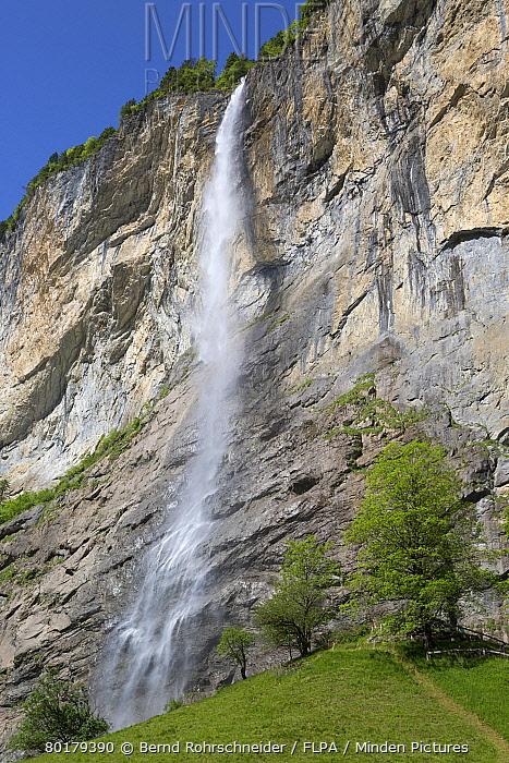 Waterfall flowing over mountain cliff, Staubbach Falls, Lauterbrunnen, Bernese Oberland, Switzerland, June  -  Bernd Rohrschneider/ FLPA