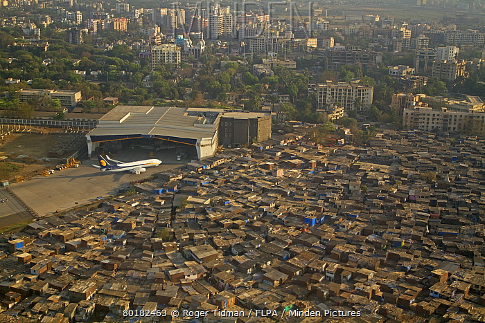 Aerial view of slum areas surrounded by luxury apartments, offices and airport, India, February  -  Roger Tidman/ FLPA
