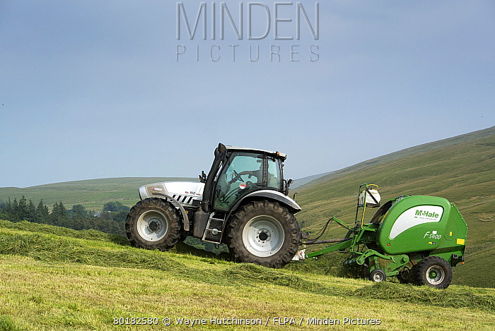 Hurlimann tractor with McHale round baler, baling on steep upland meadow, Cumbria, England, July  -  Wayne Hutchinson/ FLPA
