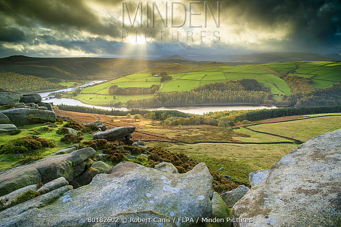 View over rocks towards reservoir, looking from Derwent Edge towards Ladybower Reservoir, Peak District National Park, Derbyshire, England, October  -  Robert Canis/ FLPA