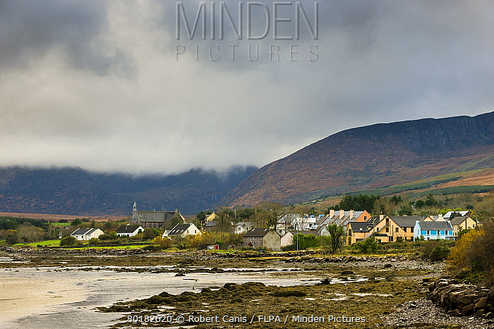 View of coastal village, Cloghane, Dingle Peninsula, County Kerry, Munster, Ireland, November  -  Robert Canis/ FLPA