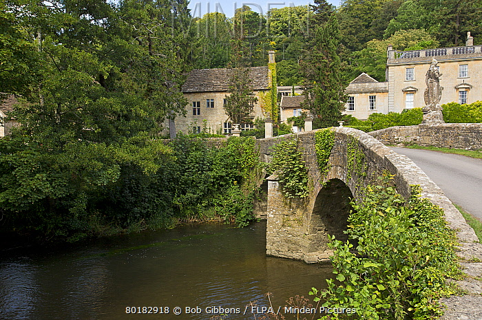 View of river and old bridge near manor house, Iford Manor, River Frome, Frome Valley, Wiltshire, England, August  -  Bob Gibbons/ FLPA