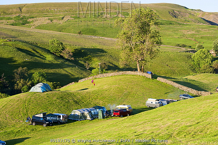Campsite with campervans and tents on farmland in evening, Swaledale, Yorkshire Dales National Park, North Yorkshire, England, July  -  Wayne Hutchinson/ FLPA