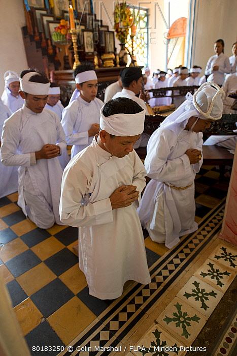 Caodaist disciples kneeling during ceremony, Cao Dai temple, Tay Ninh Holy See, Tay Ninh, Tay Ninh Province, Vietnam, December  -  Colin Marshall/ FLPA