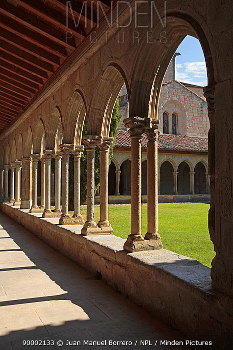 Archways and courtyard of the Abbey of St Hilaire, France  -  Juan Manuel Borrero/ npl