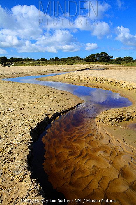 Small stream winding through the beach to the sea, Studland Bay, Dorset, England  -  Adam Burton/ npl