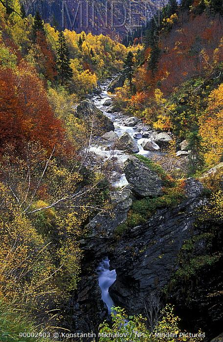 Beautiful preserved valley of river Kizgych in Arkhyz area, Teberdinskiy Zapovednik reserve, Caucasus mountains, Karacheyevo Cherkessiya, Russia  -  Konstantin Mikhailov/ npl