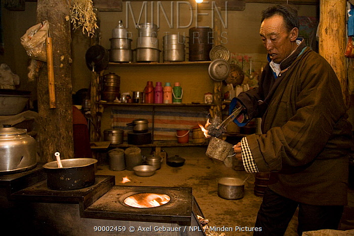 Man preparing sacrificial fire with juniper, Dargye, Sichuan, Tibet, China  -  Dr. Axel Gebauer/ npl