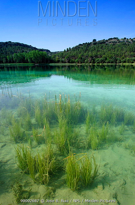 Nature reserve, Lagunas de Ruidera, Castilla la Mancha, Ciudad Real, Spain  -  Jose B. Ruiz/ npl