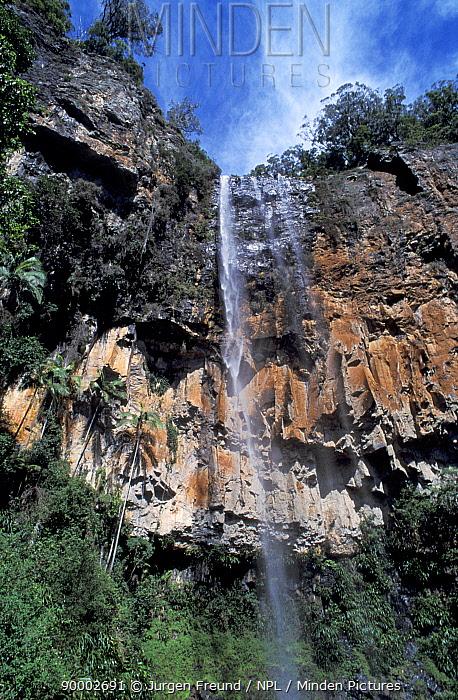 Purling Brook Falls, Springbrook NP, Queensland, Australia  -  Jurgen Freund/ npl