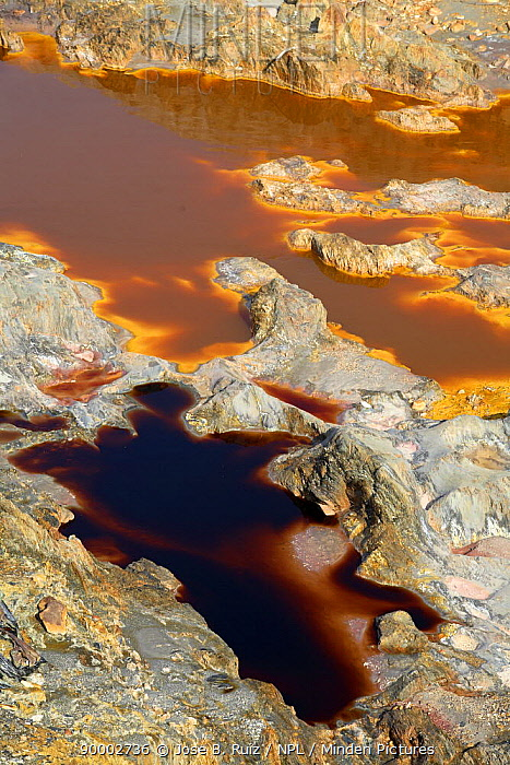 Riotinto river, mineral rich soil mined for iron which seeps into and discolours the river water, Huelva, Spain  -  Jose B. Ruiz/ npl
