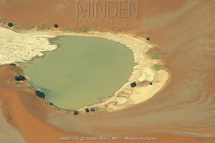 View of lake surrounded by sand dunes, with some vegetation growing around the edges, Namib Naukluft NP, Namib desert, Namibia  -  Jouan & Rius/ npl