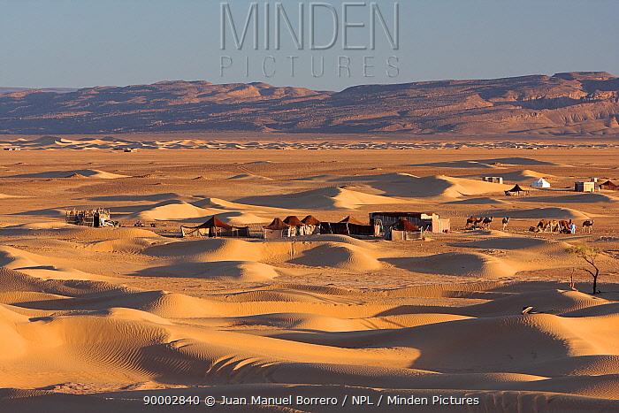 Cluster of Haima (tents) in Erg Lihoudi desert, M?Hamid, Morocco December 2007  -  Juan Manuel Borrero/ npl