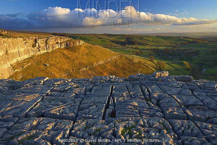 Limestone pavement at Malham Cove, Yorkshire Dales National Park, England, UK  -  David Noton/ npl
