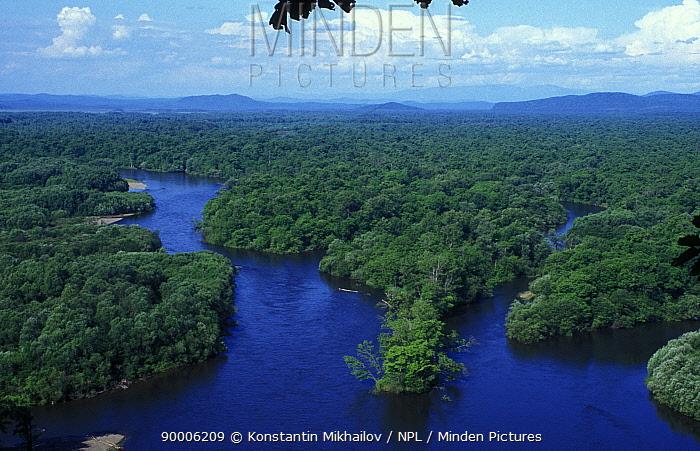 Old-growth riparian forests in the River Bikin valley, June, Sikhote-Alin, Ussuriland, Primorsky, SE Siberia, Russia Rich in biodiversity  -  Konstantin Mikhailov/ npl