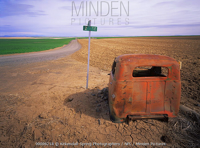 Abandoned vehicle by the side of a rural intersection, Douglas County, Washington, USA  -  Kirkendall-spring/ npl