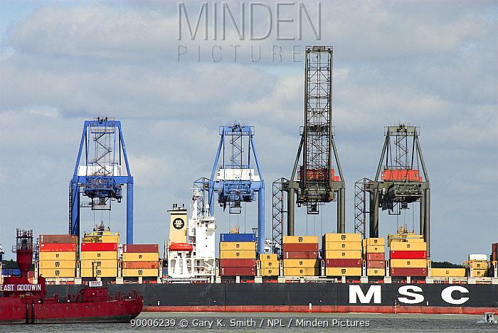 Container ship at dockyard with cranes, Felixstowe, Suffolk, England, UK  -  Gary K. Smith/ npl