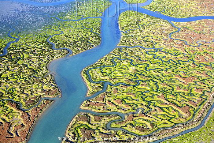 Aerial view of the Bay of Cadiz delta, San Fernando, C�diz, Spain  -  Jose B. Ruiz/ npl