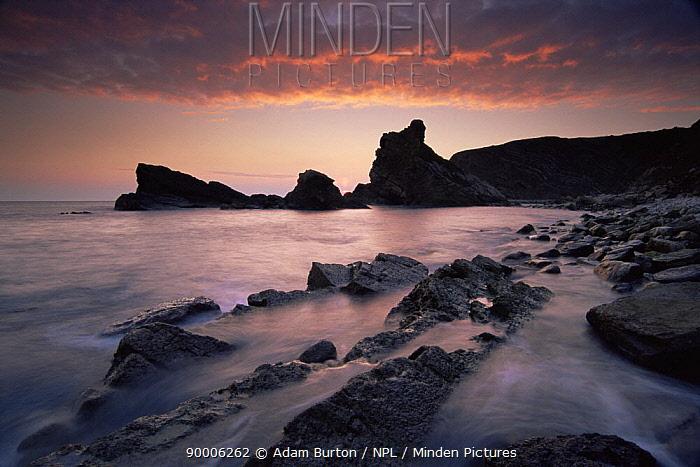 Sunset over sea stacks at Mupe bay, Jurassic Coast World Heritage Site, Dorset  -  Adam Burton/ npl