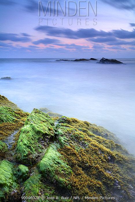 Rocks covered with seaweed at low tide, Playa (beach) de los Negretes, Calblanque, La Manga, Murcia, Spain, long time exposure  -  Jose B. Ruiz/ npl