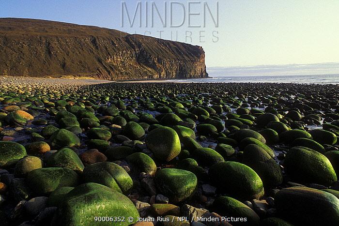 Rocky beach at low tide, Rackwick Bay, Isle of Hoy, Orkney, Scotland, UK  -  Jouan & Rius/ npl