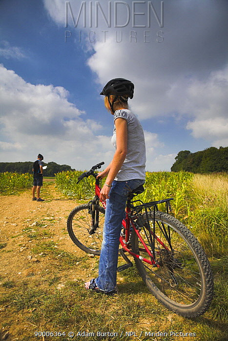 Off-road cyclists take a break to read the map in countryside near Witchampton, Dorset, England  -  Adam Burton/ npl