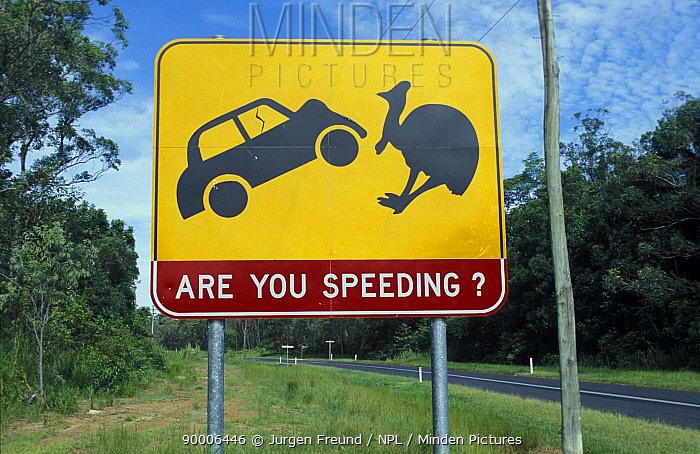 Cassowary protection warning road sign, Western Australia  -  Jurgen Freund/ npl