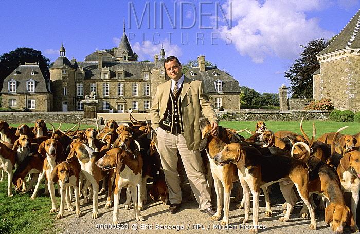 Olivier de LORGERIL, Comte de la Bourbansais, and his pack of French Tricolore Hound at the Chateau de la Bourbansais, Brittany, France 2007  -  Eric Baccega/ npl