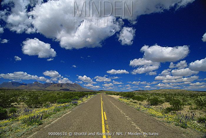 Highway to Big Bend NP, Texas, USA, 2007  -  Shattil & Rozinski/ npl