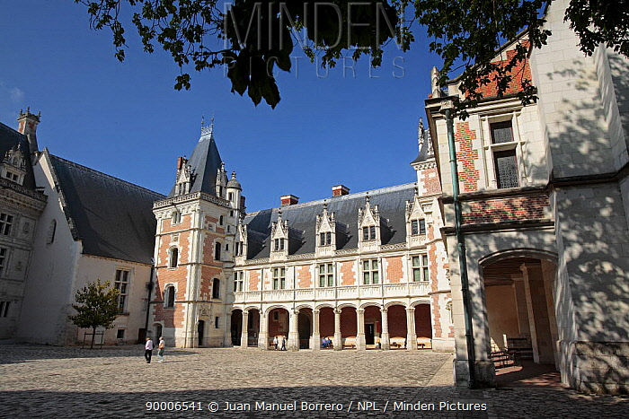 People in the courtyard at the Castle of Blois, Loire Valley, France  -  Juan Manuel Borrero/ npl
