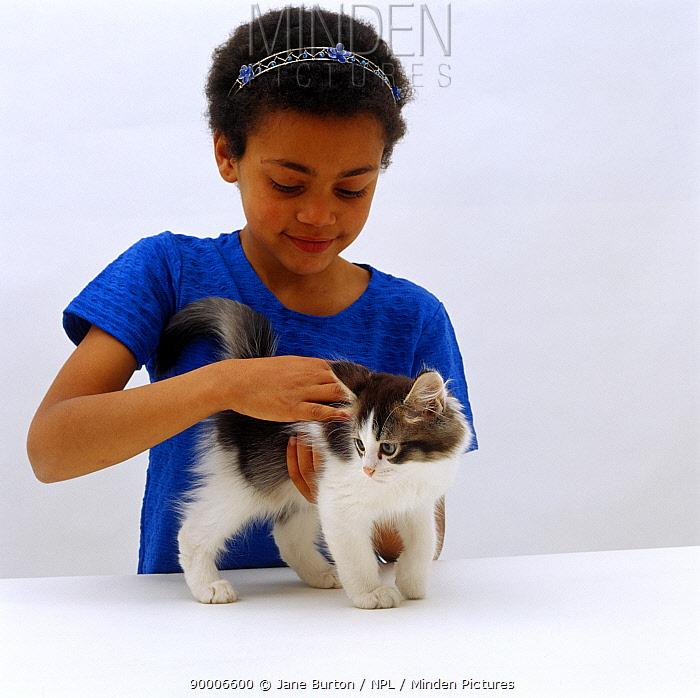 Domestic Cat (Felis catus), girl stroking tabby-and-white kitten  -  Jane Burton/ npl
