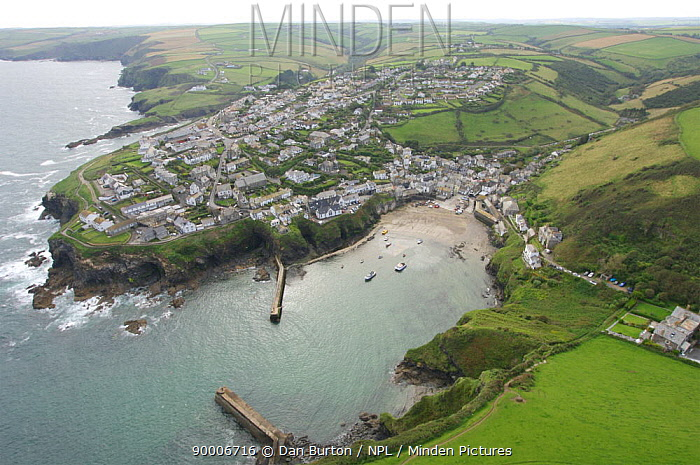 Aerial view of Port Isaac, Cornwall, UK  -  Dan Burton/ npl
