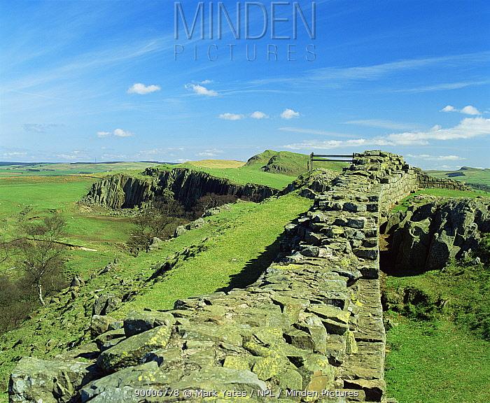 Looking east along Hadrians Wall, Nr Greehead, Northumberland, UK  -  Mark Yates/ npl