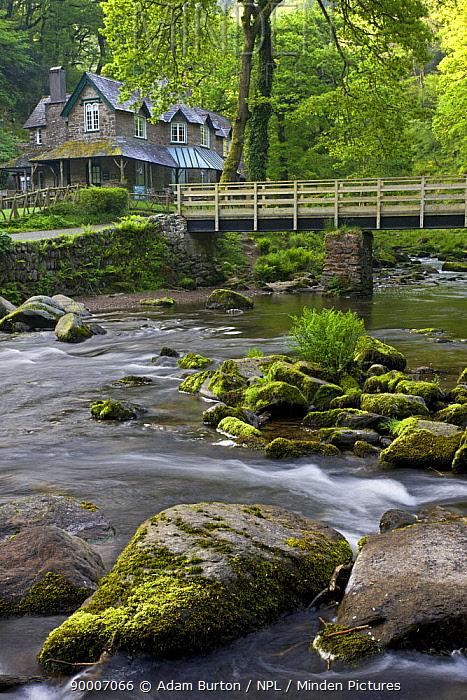 Watersmeet house (former fishing lodge) and bridge, Watersmeet, Exmoor NP, Devon, UK, spring  -  Adam Burton/ npl