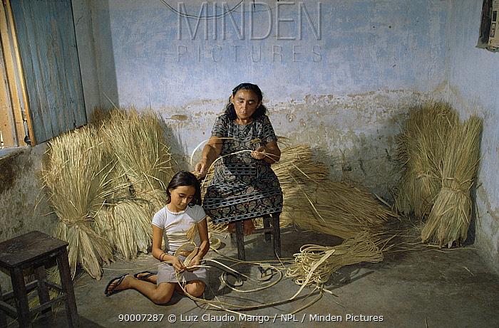 Woman and girl weaving wad palm (Copernicia cerifera) Aracati, Ceara, NE Brazil  -  Luiz Claudio Marigo/ npl