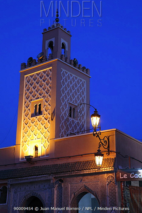 The tower of a Mosque in Djemaa el Fna square lit up at night Marrakech, Morocco December 2007  -  Juan Manuel Borrero/ npl