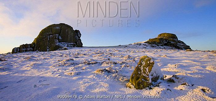 Haytor on snowy winter morning, Dartmoor National Park, Devon, England, 2008  -  Adam Burton/ npl