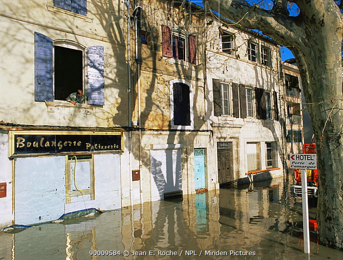 Flooded streets of Arles on the River Rhone, Camargue, France, December 2003  -  Jean E. Roche/ npl